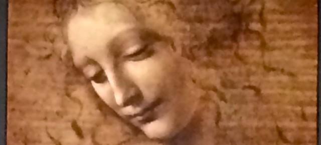 Leonardo da Vinci en France